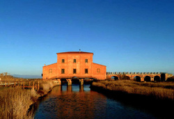 Red house at Ximenes, Maremma